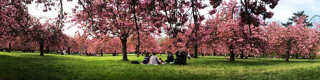 Parque de Sceaux