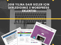 wordpress eklentisi