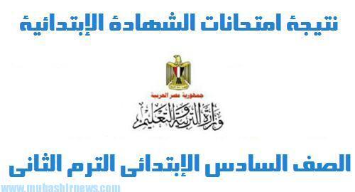 مبروك ياولاد نتيجة الشهادة الابتدائية محافظة الغربية