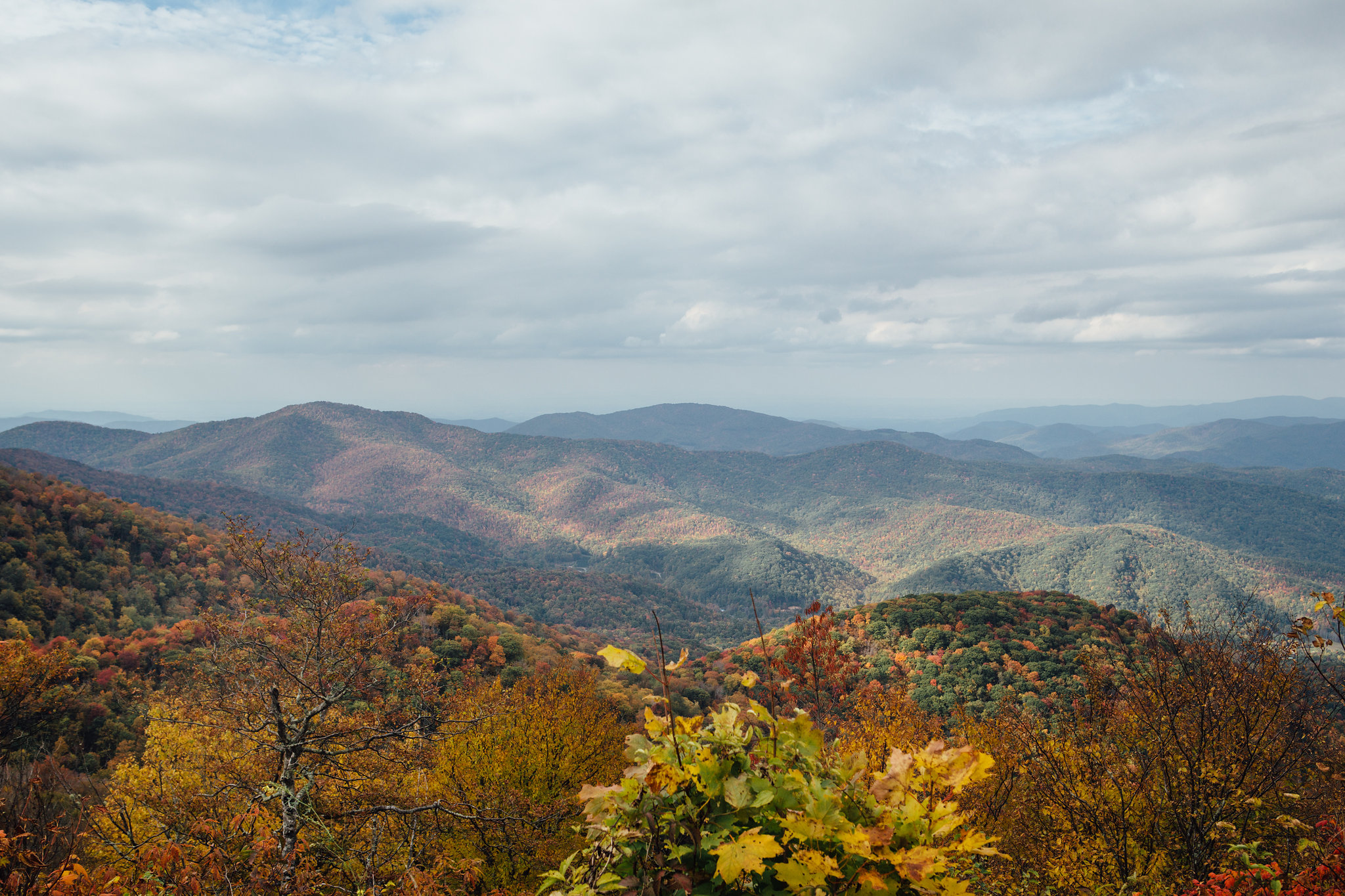Carvers Gap on the Appalachian Trail