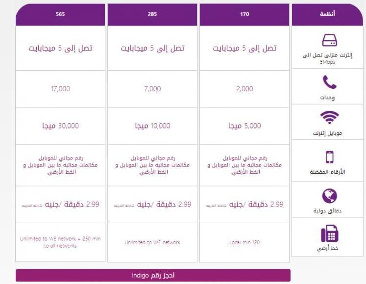 الموقع الرسمي للشركة المصرية للاتصالات Teeg الاستعلام عن