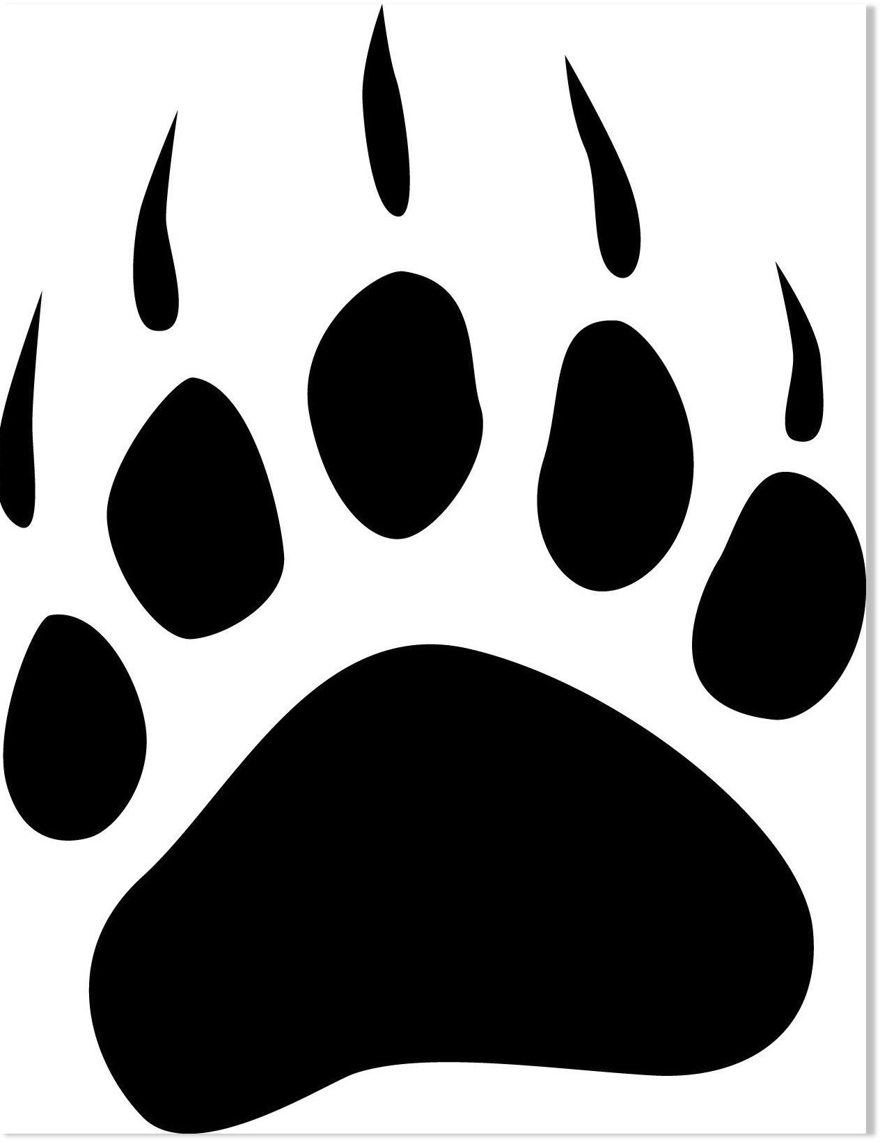 Bear mauls 6 people in Odisha, India -- Earth Changes ... (1264 x 1641 Pixel)