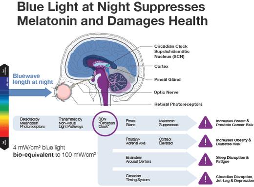 blue light melatonin