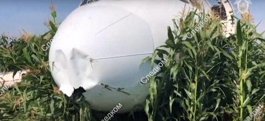 moscow jet crash bird strike