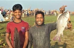 পাবনায় বাউৎ উৎসবে মেতেছে মাছ শিকারীরা