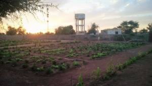 Espace culturel et agricole Adunam_o