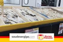 soudesergipe_nunespeixoto (11)