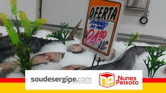nunes-peixoto (7)