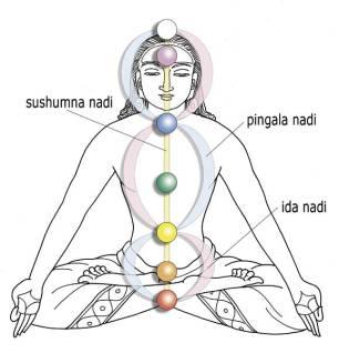 De 3 lichtkanalen van de Kundalini: Sushumna, Ida en Pingala