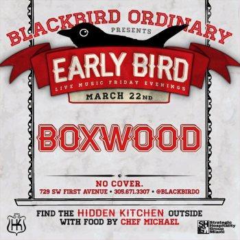 boxwoodbird