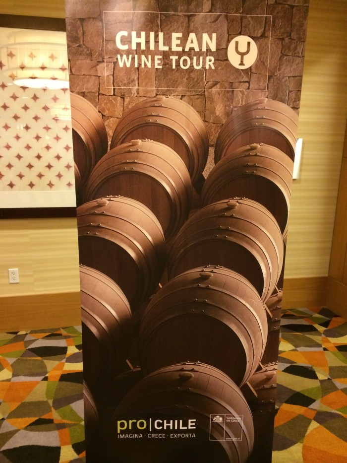 ProChile Wine Seminar 19