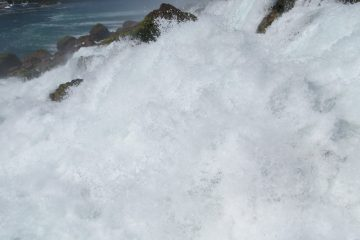 roaring seas