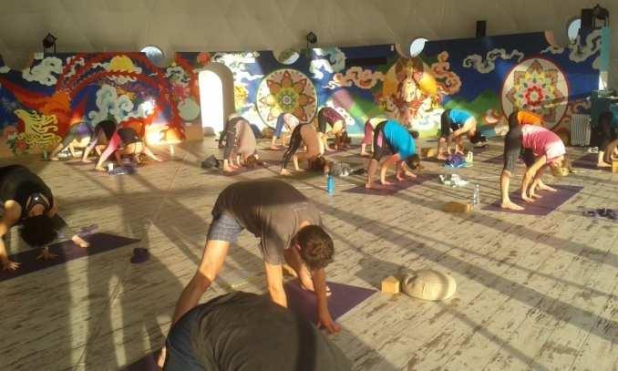Vinyasa and Yin Yoga Teacher Training