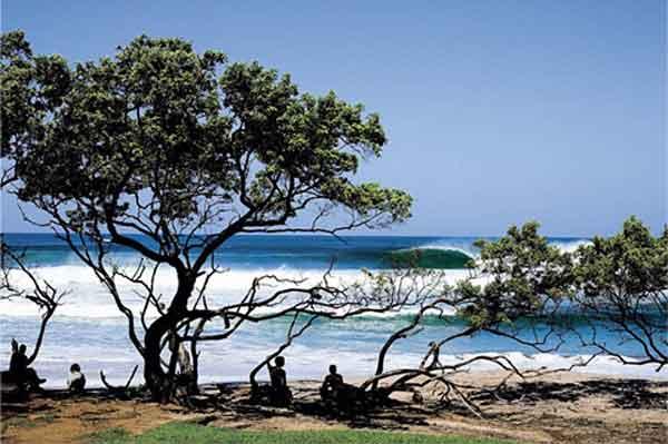 surf_playa_negra