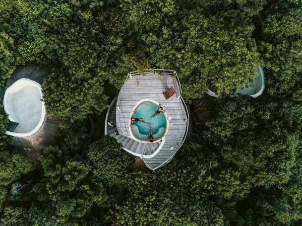 Papaya Project