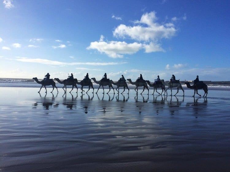 Luxury Ritual+Renewal Yoga Retreat, Marrakech 7th – 13th
