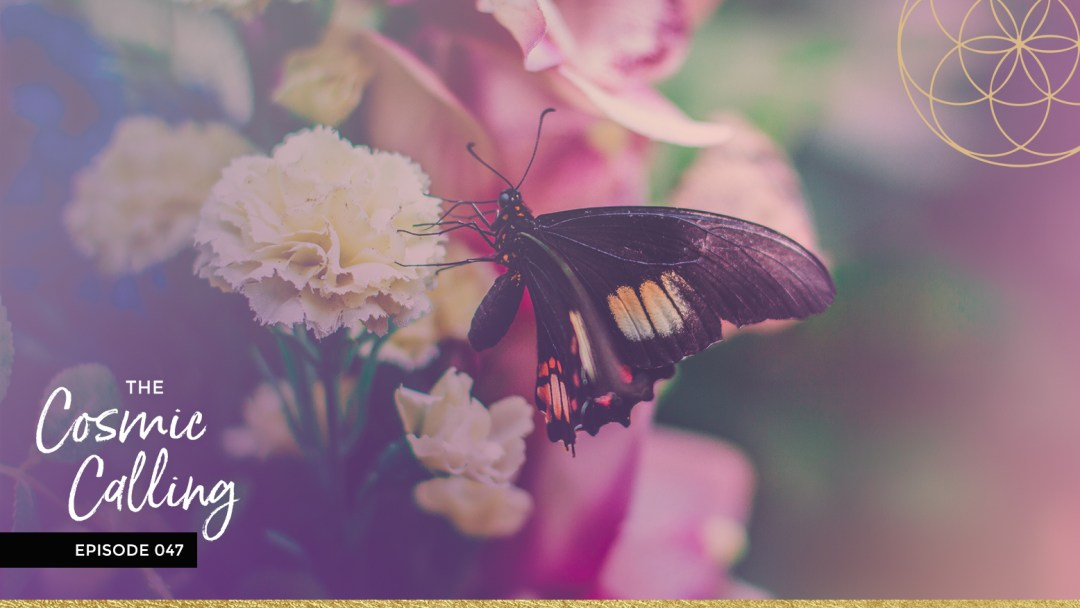 047 | July 2019 Monthly Forecast - Soulshine Astrology