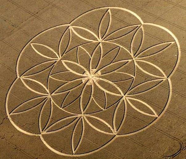 https://i2.wp.com/www.soulsofdistortion.nl/images/Flower%20of%20lifce%20crop%20circle.jpg