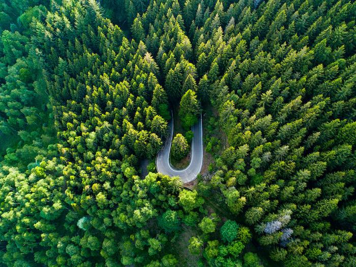 Green Mindfulness all'Oasi Zegna