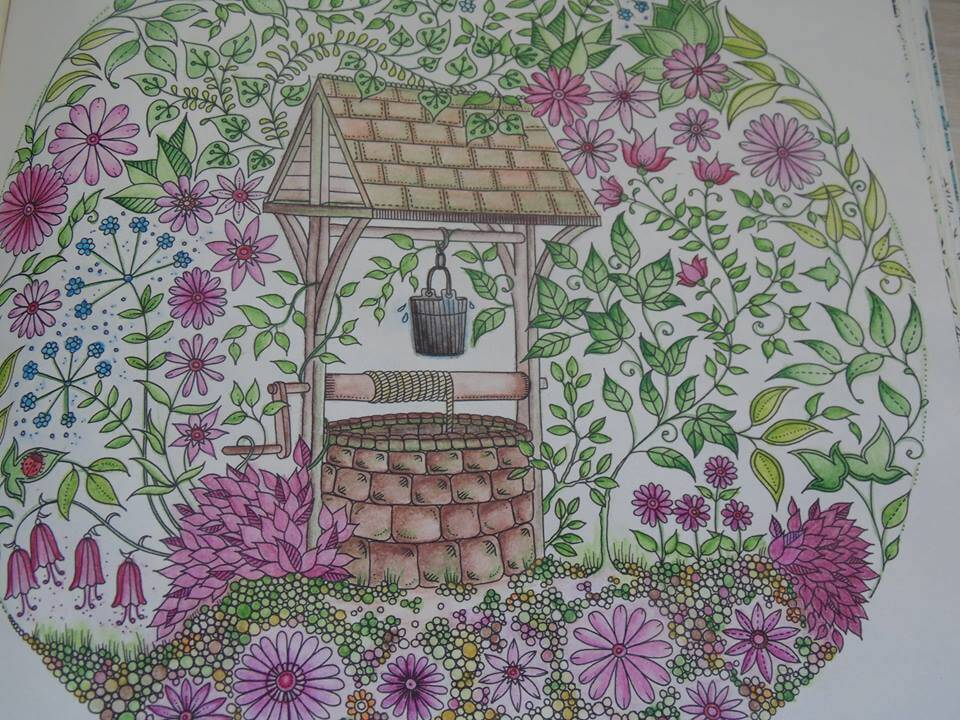 livro-de-colorir-jardim-secreto-neusicleia-linjardi