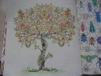 livro-de-colorir-jardim-secreto-neusicleia