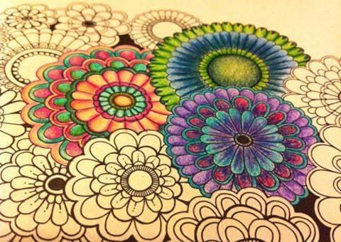 livro-de-colorir-jardim-secreto-vania-passos