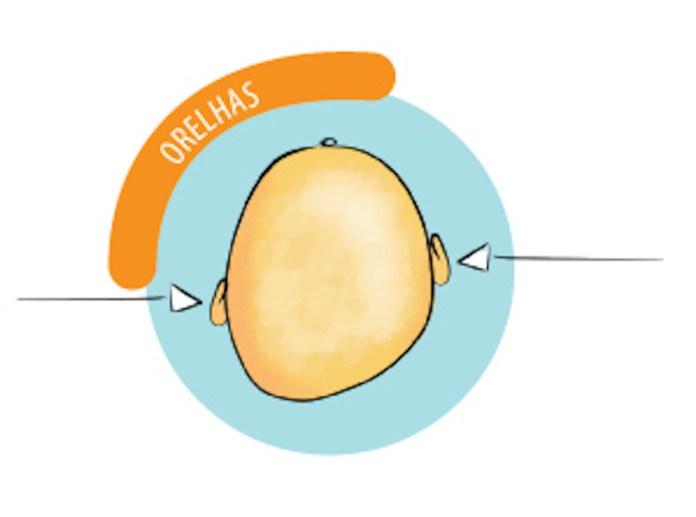 assimetrias-cranianas-em-bebês-alinhamento das orelhas
