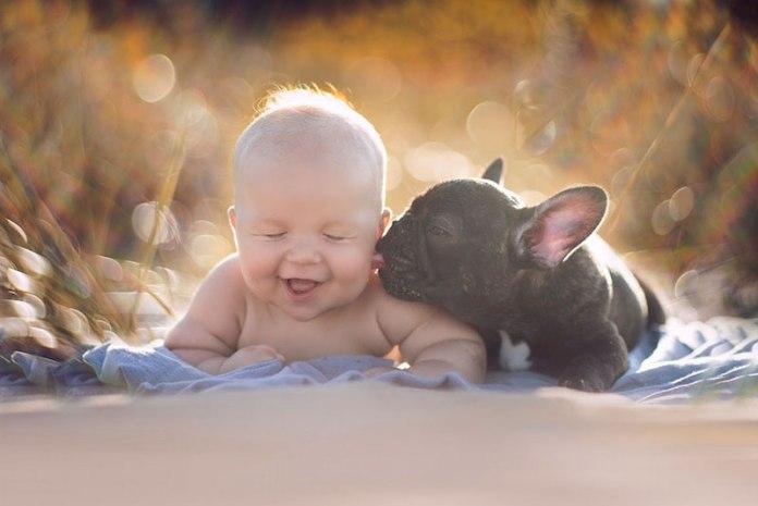 bebê-e-cachorro