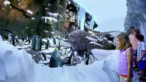 roteiro-em-orlando-penguin