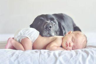 dicas para tirar fotos mãe e filhos cachorro lindo