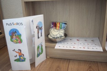 lapbooks-passaros