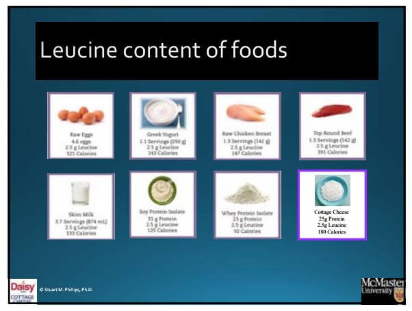 Leucine Content of Foods