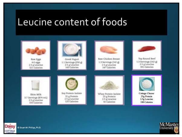 Leucine Content of Foods