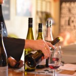 Sounds Connection, Amazing Wine Tours in Marlborough (80)