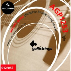 Galli Acoustic Strings12s Pro Coated PH BR