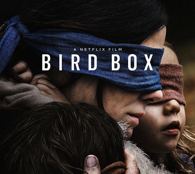 Bird Box Netflix-Poster