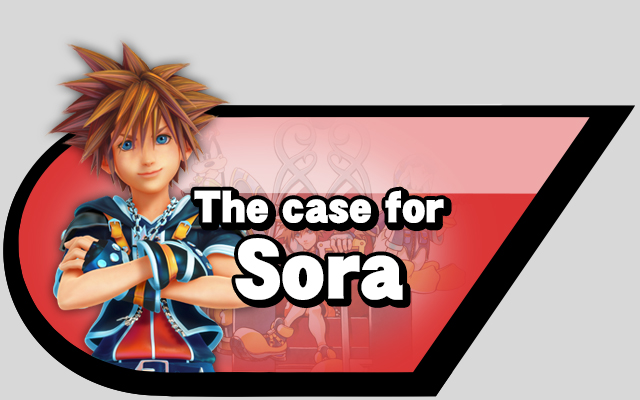 case for Sora