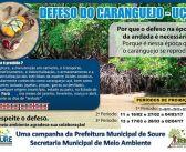 Período Defeso do Caranguejo-uçá