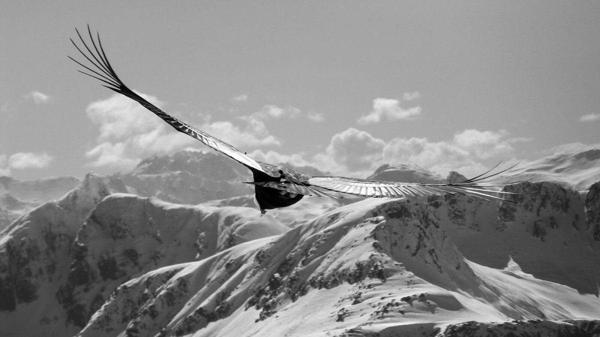 Participa en el Catastro Nacional de Restricciones de Acceso a la Montaña
