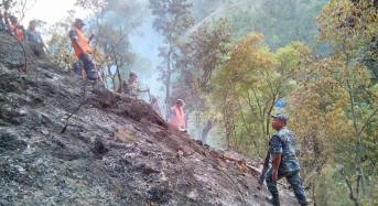 Helicopter crash in Nepal, four killed including a Dutch woman