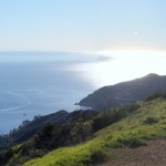 "Experiencing ""VolunTourism"" First Hand on Catalina Island"