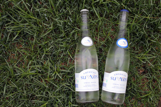 Two bottles of american summits water nestled in the grass.  The sparkling is on the left, the still on the right.  Enjoy!