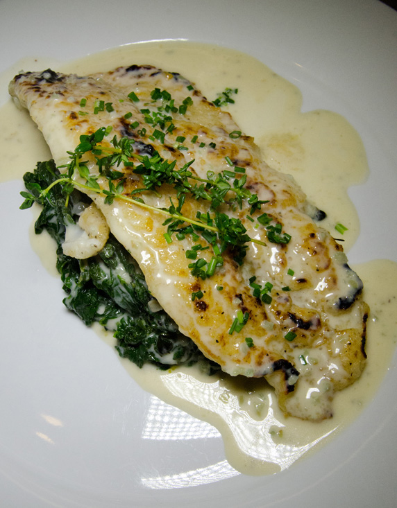 Pan-seared sole with champagne and dill cream