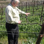 Wine Tasting at Clos Pepe in Lompoc, CA: It's a Lot More Than Flowers