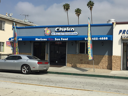 Cheko sign