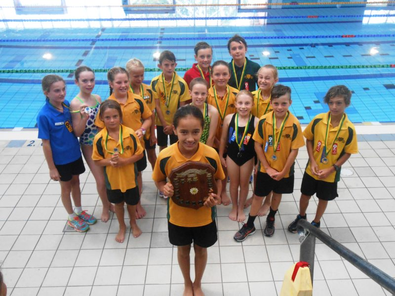 2017 Faction Swimming Carnival