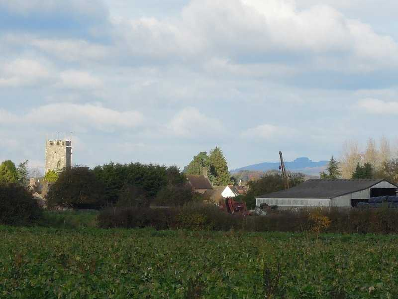 Now on the edge of Frampton on Severn, we spot the church. Also May Hill, much foreshortened.