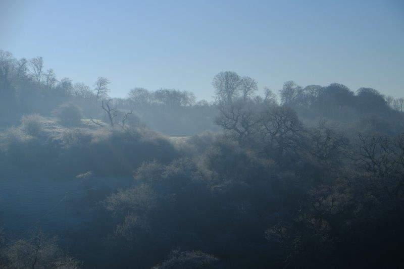 A misty frozen day