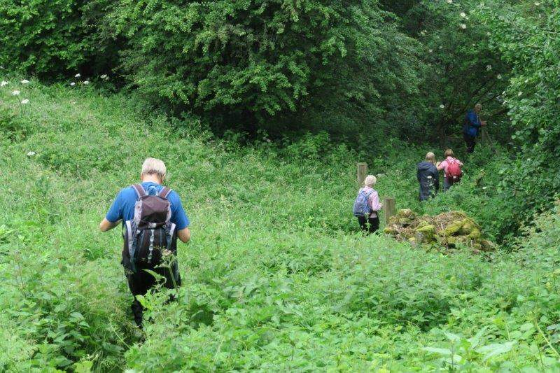 And down a steep path