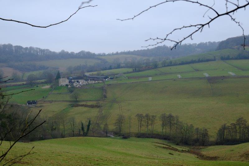 Looking over the valley at the racing yard